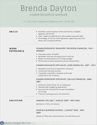 Free Download Resume Templates Microsoft Word Microsoft Templates For Resume Templates Chcsventura