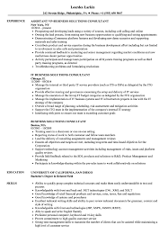 Business Solutions Consultant Resume Samples Velvet Jobs