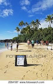 Laniakea Beach Turtle Beach On The North Shore Oahu