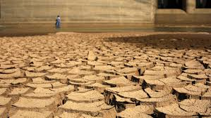 Image result for areas of drought in the world
