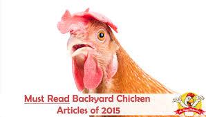 100  Backyard Chicken Blog   Do Chicken Coops Attract Mice And Backyard Chicken Blog