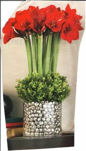 Image result for pinterest christmas flower arrangements