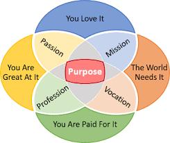 Venn Diagram Purpose What Would You Look Like As A Venn Diagram The Perfect