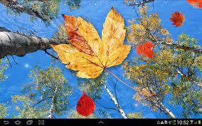 Autumn Leaves Live Wallpaper 1.0.6 ...