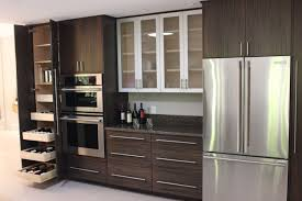 Build In Cabinet Design Kitchen Staggering Building Kitchen Design Building