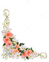 tropical flowers corner design stock