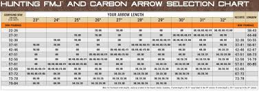 Xx75 Arrow Chart 53 Unique Beman Arrow Spine Chart Home Furniture