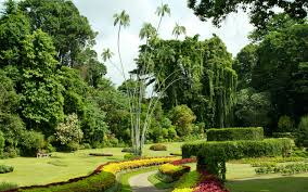 Small Picture Most Beautiful Botanical Gardens Around the World Travel Leisure