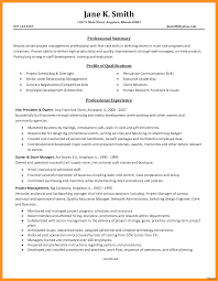 Executive Resume Examples 2017 It Manager Resume Examples 100 Best Of Writer Director 100 Entry 19