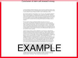 conclusion of stem cell research essay coursework help conclusion of stem cell research essay conclusion paragraph for stem cell research paper essay scorer