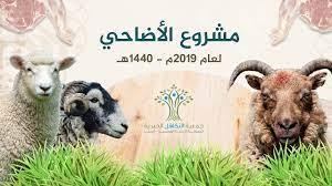 مشروع أضاحي العيد لعام 2019م II جمعية التكافل الخيرية - YouTube