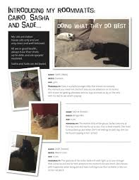 Dog Resume Resumes Grooming Sample Rescue Me Dogs Illinois Walker