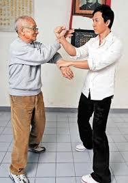Donnie yen vs ip chun (son of ip man)   Wing chun martial arts, Wing chun,  Chinese martial arts