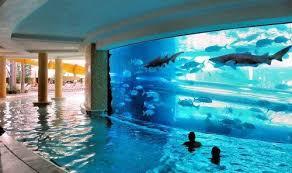 11 Most Beautiful Swimming Pools Photos | Big fish tanks, Big fish and Fish  tanks