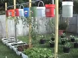 upside down hanging vegetable garden containers plastic drums bags and toilets