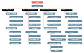 Non Profit Organizational Chart Examples