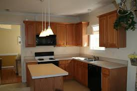 Paint Kitchen Cabinets Before And After Inspiration You Can PAINT Kitchen Cabinets It's Easy And It Can Make Wonders