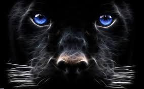 Daniel Sierra: Black Dog HD Wallpapers ...