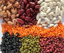 """Międzynarodowy Rok Suchych Nasion Roślin Strączkowych (2016 International  Year of Pulses) """"Pożywne ziarna dla zrównoważonej przyszłości"""""""