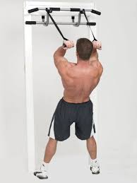 Shamrock Triple Pullup Dip And Suspension Door Gym