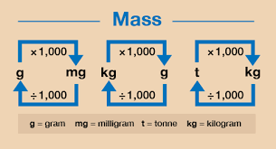 Kilograms To Grams Conversion Chart Session 2 Units Of Measure 3 3 Converting Metric Units Of