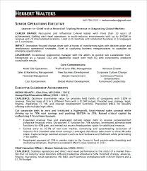 Ceo Resume Examples Beauteous Sample Ceo Resume Coo Sample Resume Executive Resume Writer Phoenix