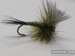 Green Drake Fly Pattern Awesome Design Inspiration
