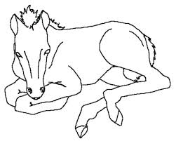 Mom And Baby Horse Coloring Pages At Getdrawingscom Free For