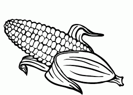 Small Picture Corn On the Cob Coloring Page Posts related to Corn Coloring