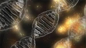 Nuevas estructuras moleculares asociadas a la enfermedad de ELA - Biotech  Spain