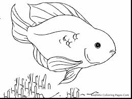 Printable Coloring Pages color pages of fish : great fish coloring pages with coloring pages of fish ...