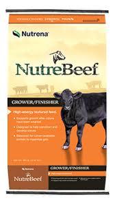Beef Feeds & Beef Minerals by Nutrena | Nutrena