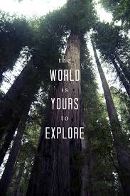 Explore Quotes Interesting Explore It Let's Travel Pinterest Explore Nature Quotes