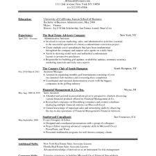 Professional Resume Sample Word Format Professional Cv Format Doc