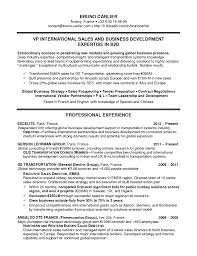 business development resume summary business development resume business development resume summary business development resume summary