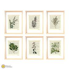 herb wall art kitchen herbs wall art set of 6 set of 6 herbs by herb herb wall art