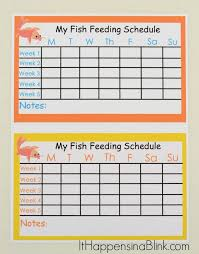 Goldfish Feeding Chart A Free Fish Feeding Schedule Printable For Kids Who Are