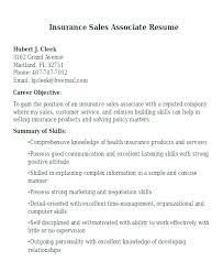 Resume Of Sales Associate Sales Associates Resume Sales Associate ...