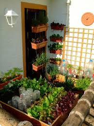 apartment vegetable garden. Exellent Garden This Tiny Balcony Vegetable Garden Only Uses 3 Square Yards Of Space And  Grows 21 Varieties In Apartment Vegetable Garden A