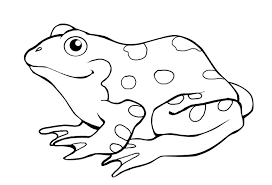 Small Picture printable frog colouring pages for preschoolers Coloring Point
