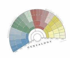 Genealogy Fan Chart Treeseek Family Tree Wall Poster Fan Chart Large Colored