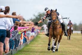Image result for sarasota polo pictures