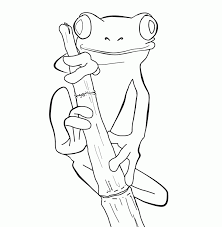 Small Picture Coloring Pages A Tree Frog HD Printable Coloring Pages
