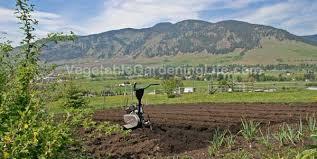 best garden tiller. choosing the best garden tiller