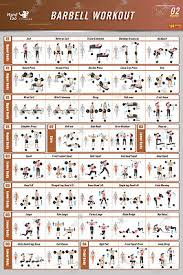 Weight Training Posters Bodybuilding Gym Exercise Charts