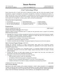 Resume Headline Examples Classy Example Of Resume Title Letter Resume Directory