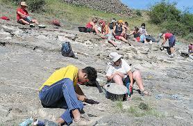 Paleontología Noticiosa: agosto 2011