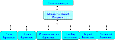 British Airways Organisational Chart Organization Structure