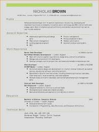 web developer resume examples. 18 Beautiful Web Developer Resume Examples Tonyworldnet