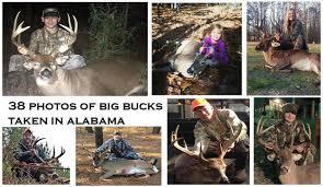 38 Photos Of Big Bucks Taken In Alabama Al Com